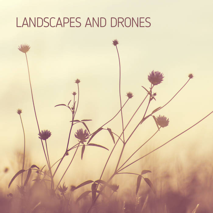 Entrevista «Un ruido llamado ángel» – «Landscapes and drones»